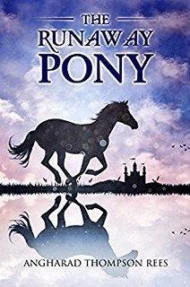 The Runaway Pony by Angharad Thompson Rees