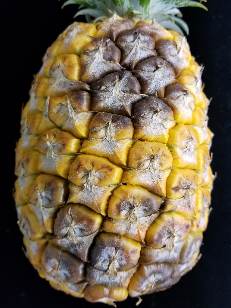Pineapple Ananas Comosus Black Rot Caused By Chalara Pa