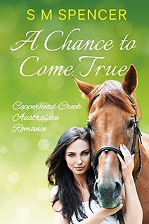 A Chance to Come True by S M Spencer
