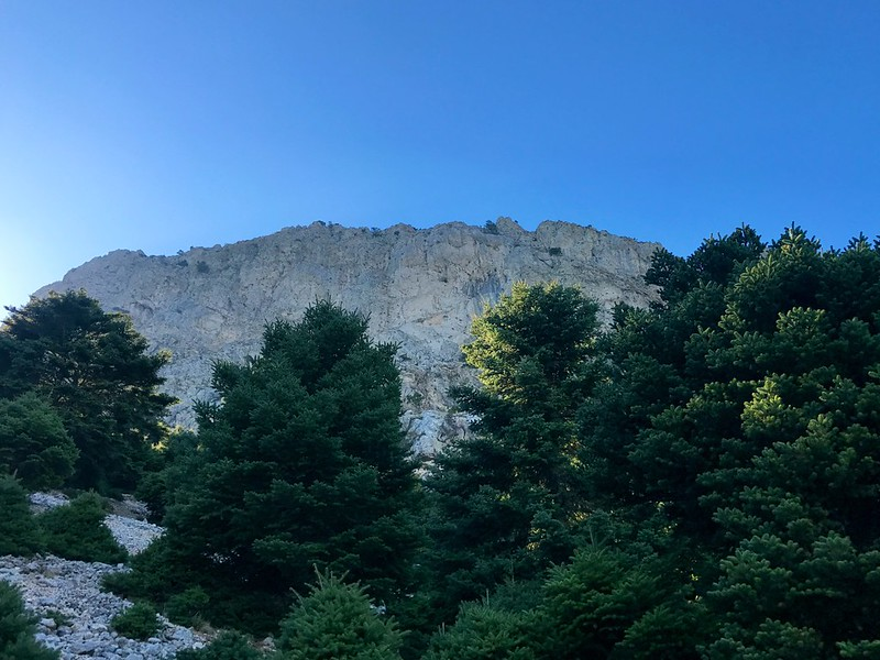 impressive view of mount artemision rocky summit after fir forest