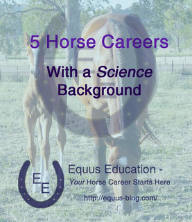 Science and Horses: 5 Horse Careers with a Science Background | Equus Education