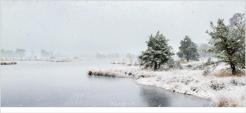 Een panoramafoto van maar liefst 133 megapixels van het Kogelvangersven, het winter wonder land
