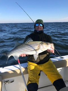 Photo of Darren Rockwood holding a striped bass