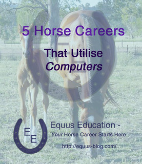 5 Horse Careers that Utilise Computers | Equus Education
