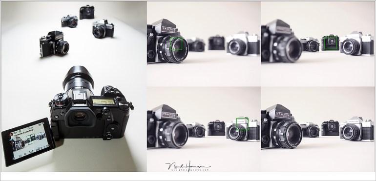 Post focus in beeld. Het is mogelijk om achteraf het punt van scherpte te bepalen wanneer deze optie is ingeschakeld. Desgewenst kun je kiezen om alles scherp in beeld te houden door middel van focus stacking.