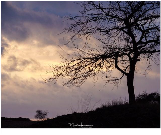 Kleurige wolken aan de horizon, vlak voor zonsondergang, komen vaak indrukwekkender in beeld met een tele objectief. (100mm | ISO500 | f/11 | 1/250)