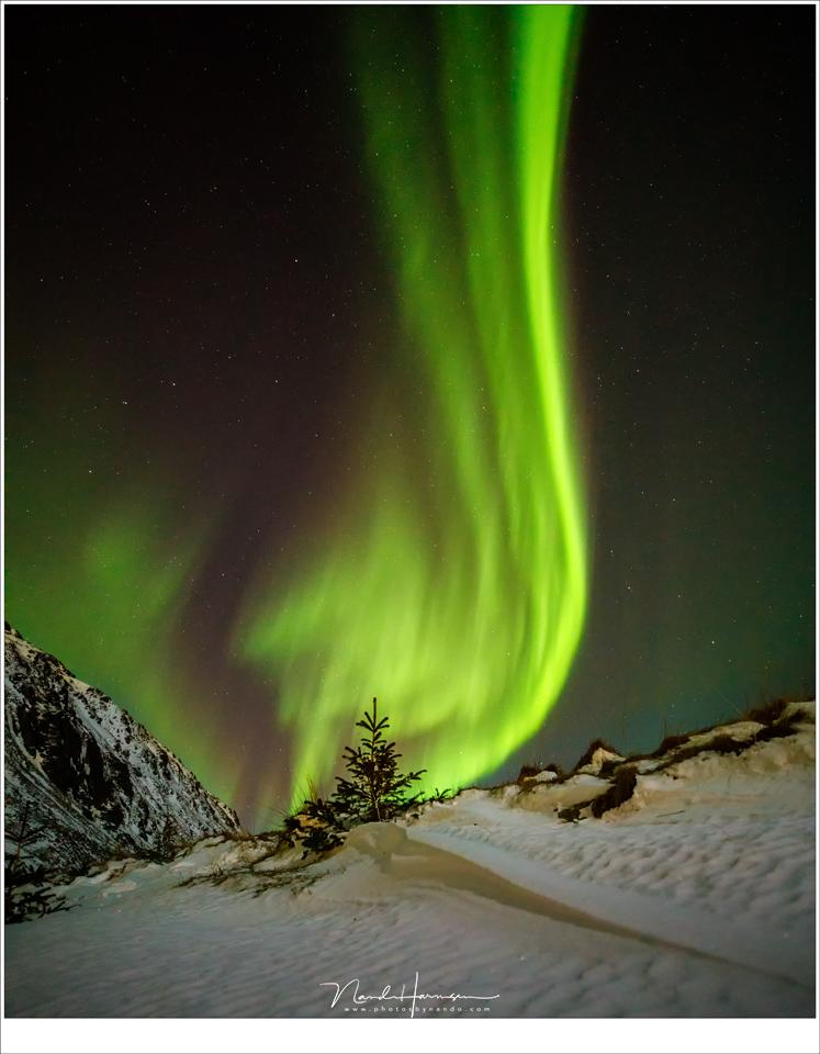 De vlam van het Noorden... (17mm | ISO6400 | f/2,8 | t=3,2sec), Lofoten in de nacht