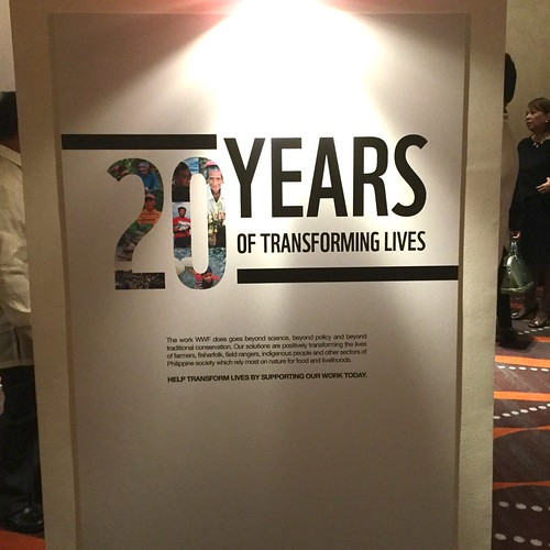 20 years of transforming lives