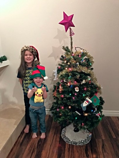 their tree