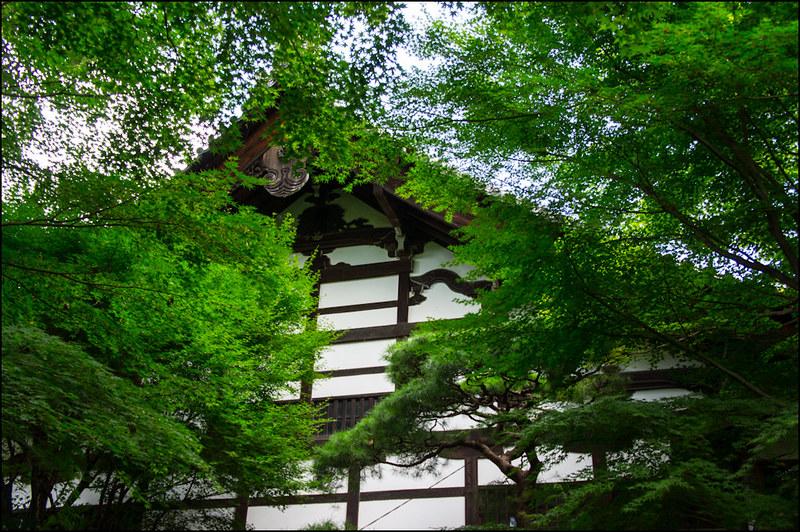 03082013D2_Kioto_Ryoanji-7