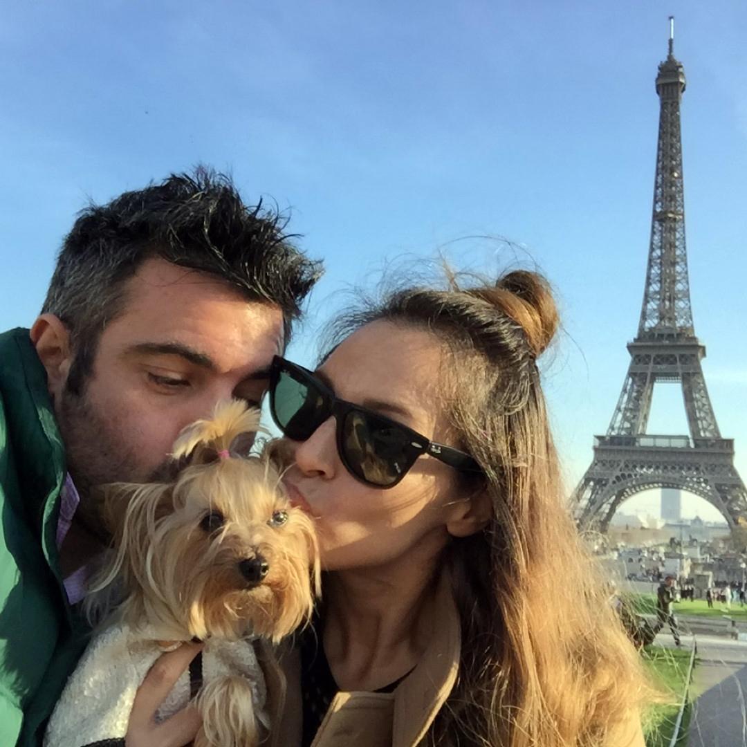 Viajar con Mascota mascotas Cómo viajar con perros y mascotas 30824274792 6508192662 o