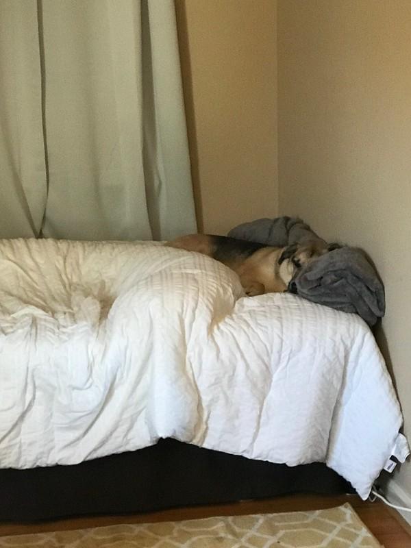 Kai napping
