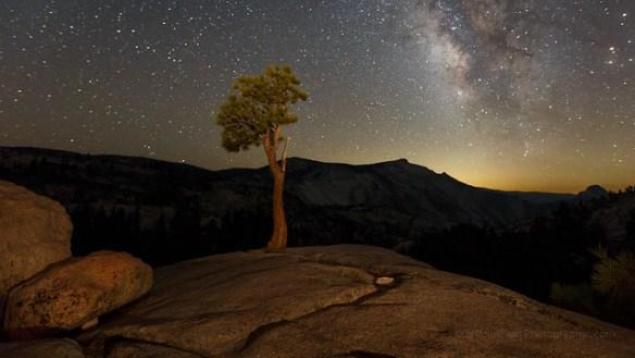 Lollipop Tree and Milky Way