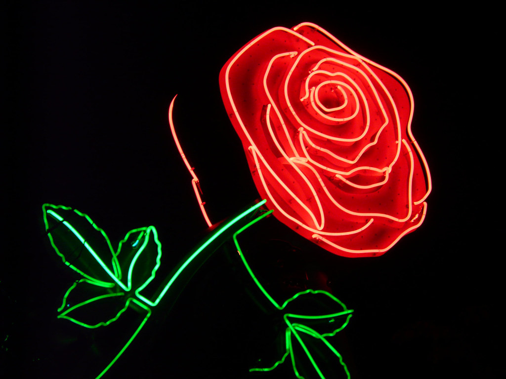 Wallpapers Tumblr Rose Neon Sign
