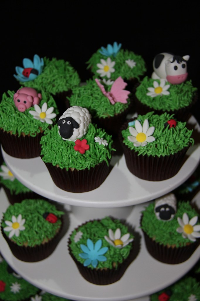 Farm Cupcake Set These Cupcakes Are For My Son To Take