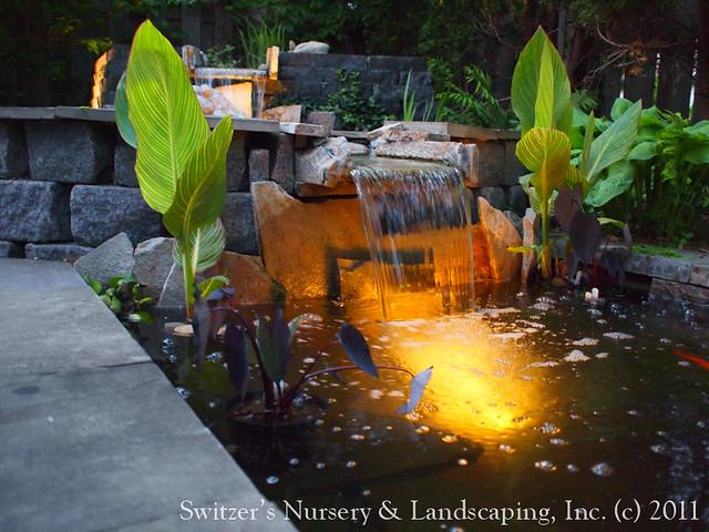 Landscape Design 80016