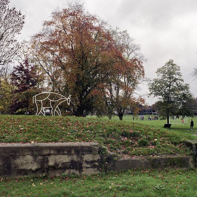 Jack Gardner, Bull, 2011, Markfield Park, Friends of Markfield Park