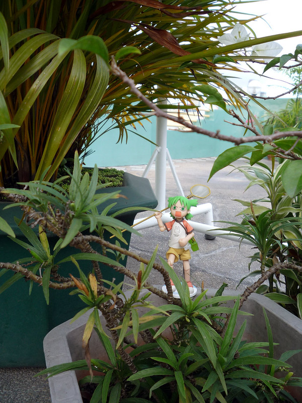 20120129_165236 Revoltech Yotsuba Summer Vacation