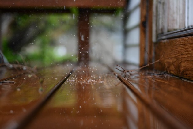 Raindrops: spring rain