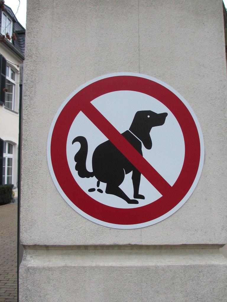 Inspiring No Dog Poop Hq Photo Free No Dog Poop Sign Poo