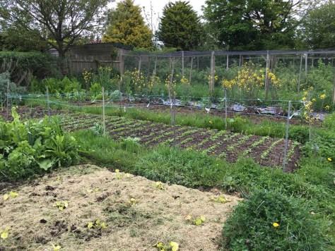 Farming 2.3