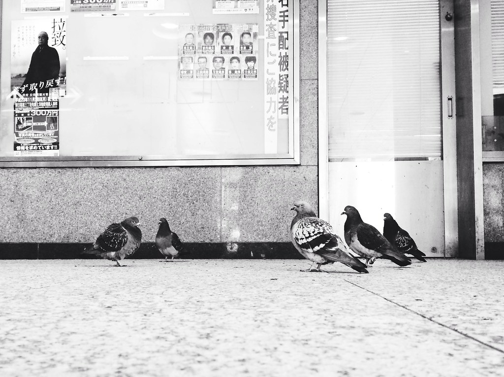 Shinjuku No. 3
