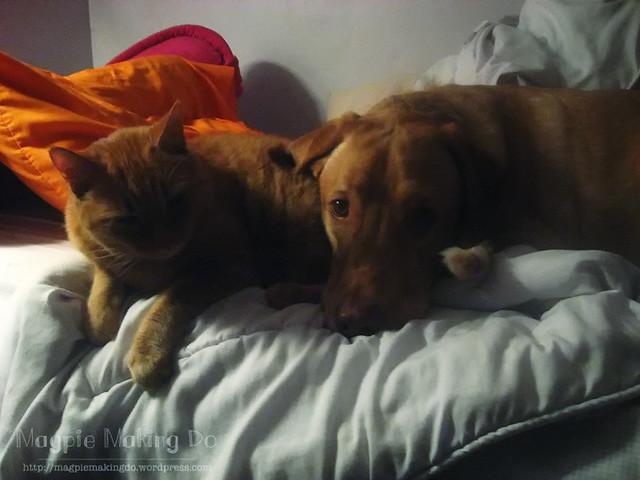 genghis cuddling with rusalka