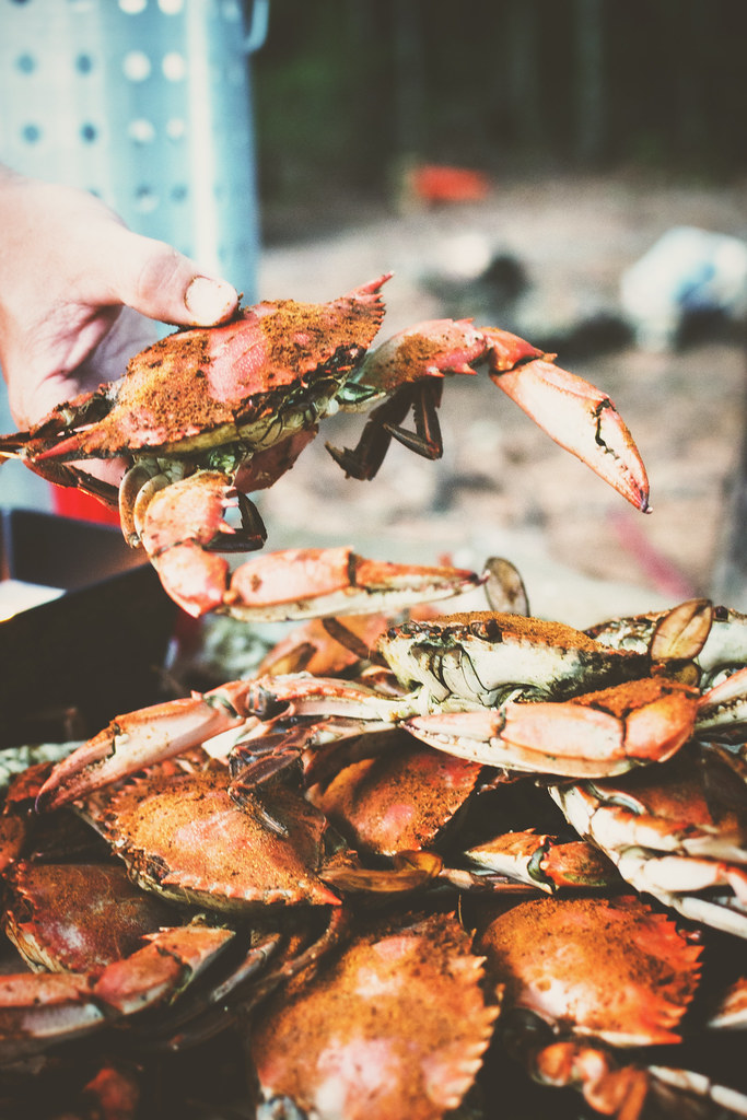 Steam Blue Crabs {Girl Carnivore}