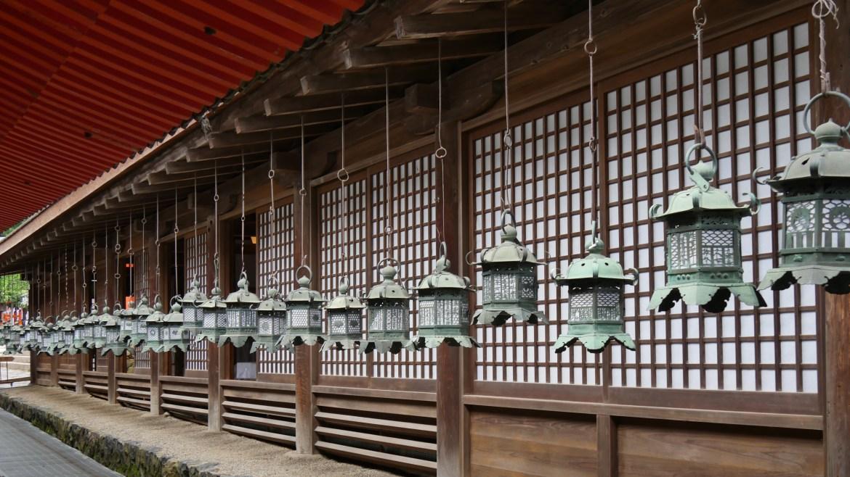 Nara113
