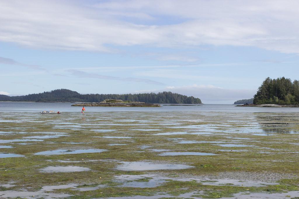 kayaks docked at Mud Bay