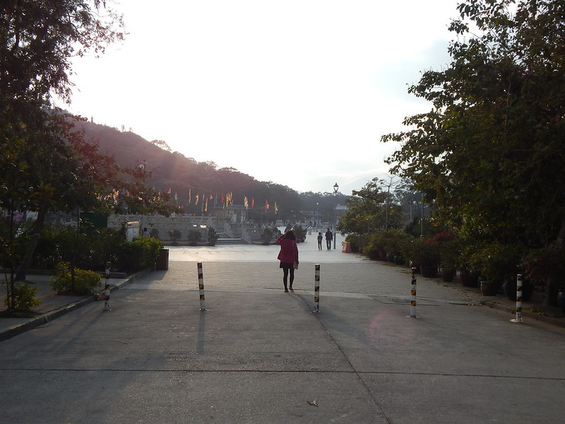 City Girl City Stories: Ngong Ping 360