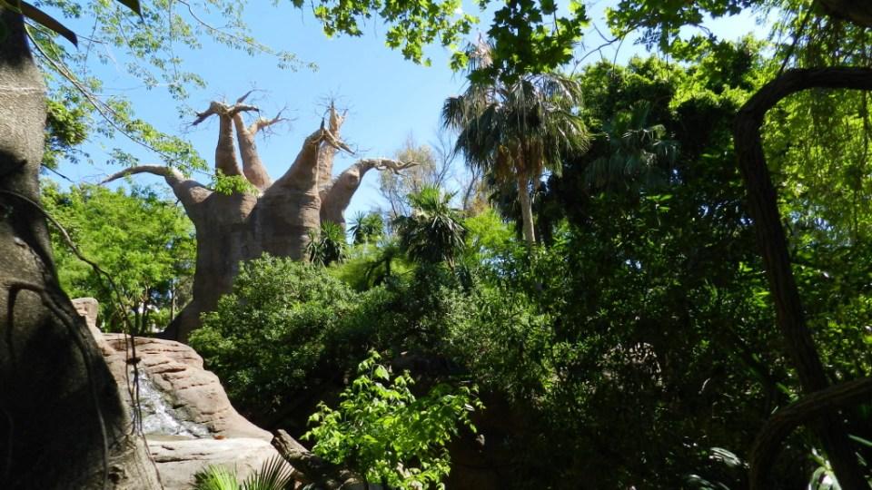 Isla de Madagascar Bioparc Fuengirola Malaga 11