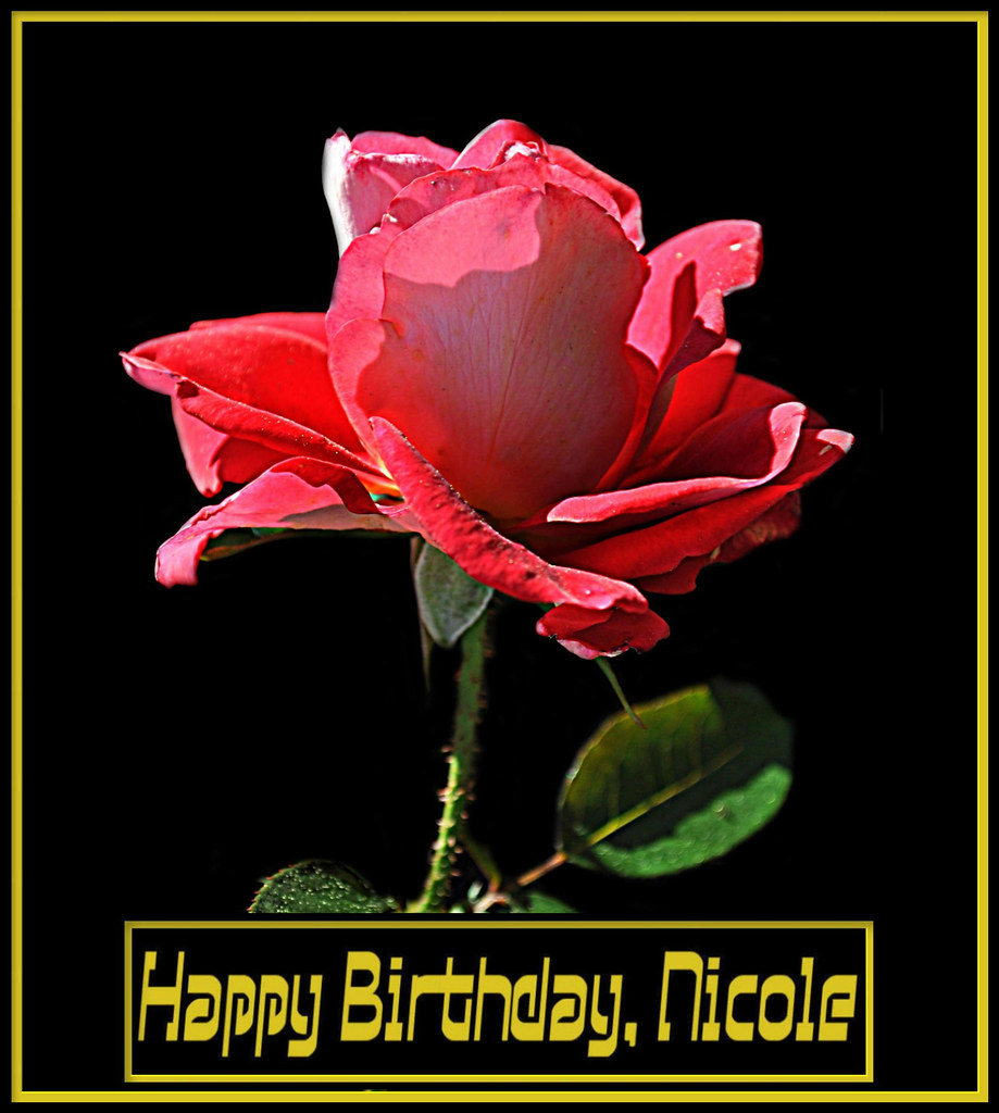 Happy Birthday Nicole To My Very Dear Friend Amp Team Mate Flickr