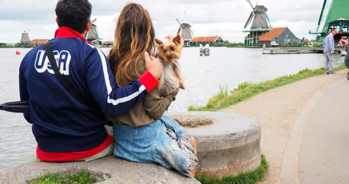 Qué ver en Ámsterdam - Museo qué ver en Ámsterdam Qué ver en Ámsterdam 29397505276 63b649d362 o