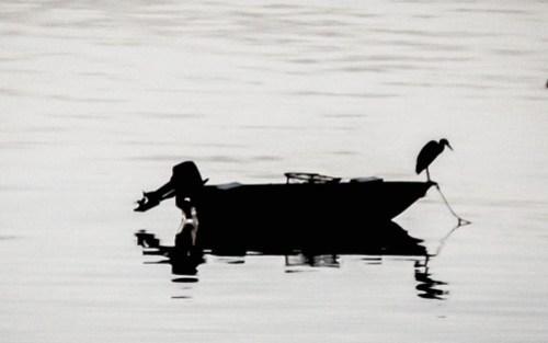 Traditional Samish Fisherman