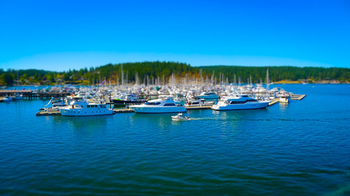 Anacortes to Friday Harbor-71