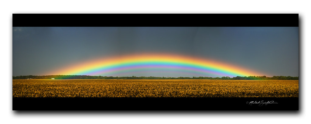 Incredible Low Arch Rainbow With Supernumeraries Panorama