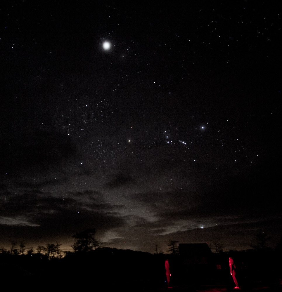 Night Sky Over Big Cypress National Preserve Taken At
