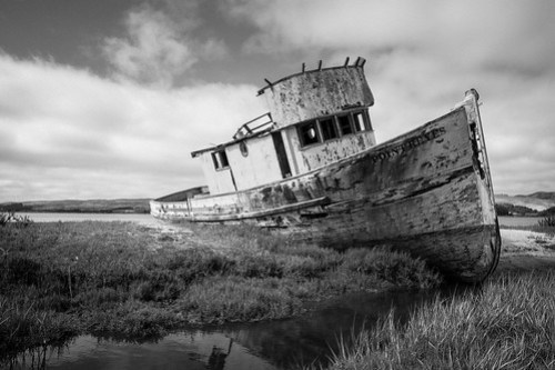 """Point Reyes"" shipwreck in Inverness, CA"