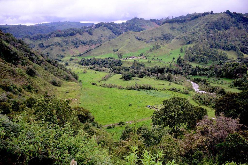 La rivière Quindio