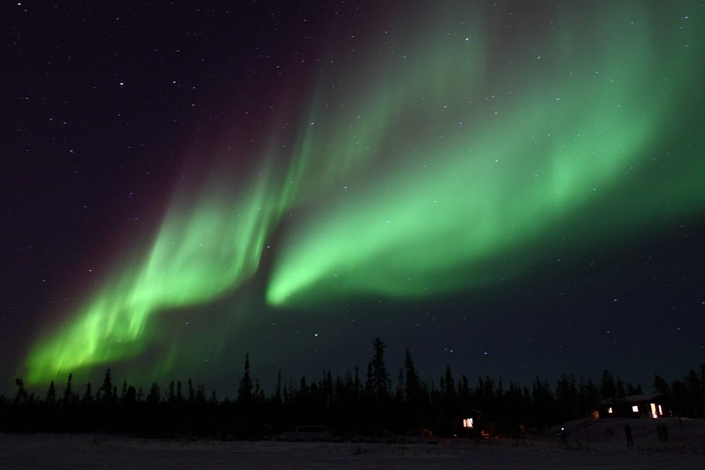 Northern Light Blog