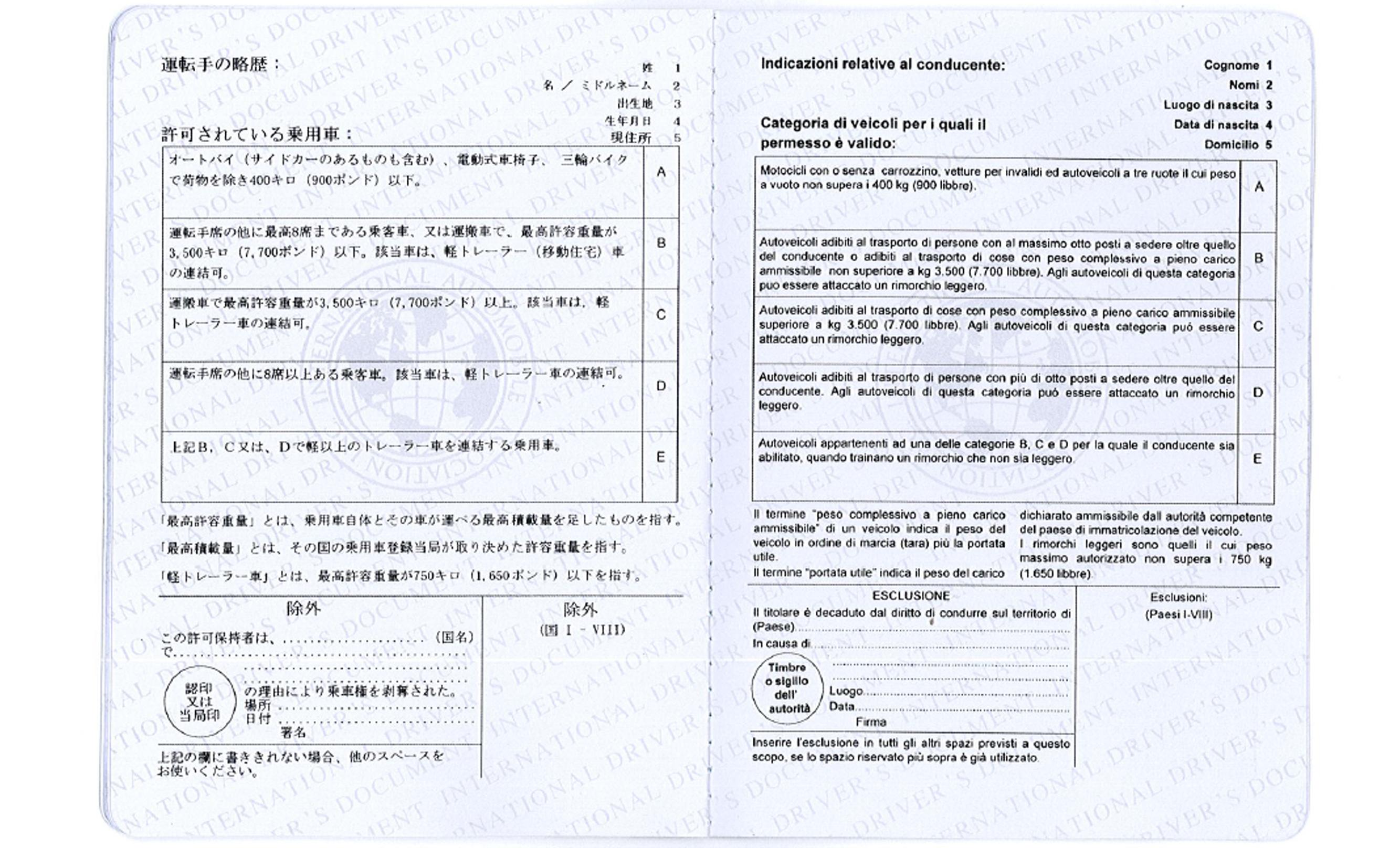 Sample Of International Driver S License