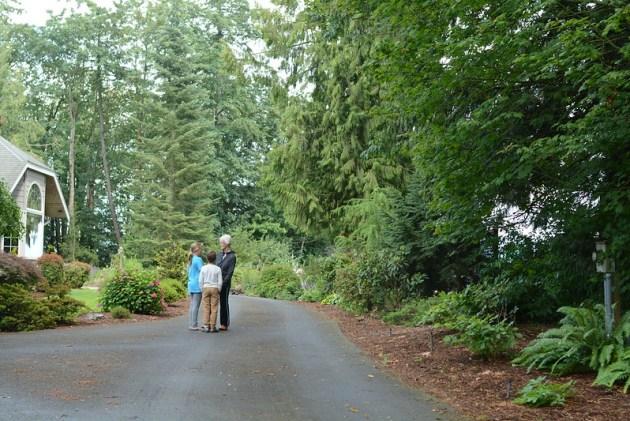 a walk to Grandma's