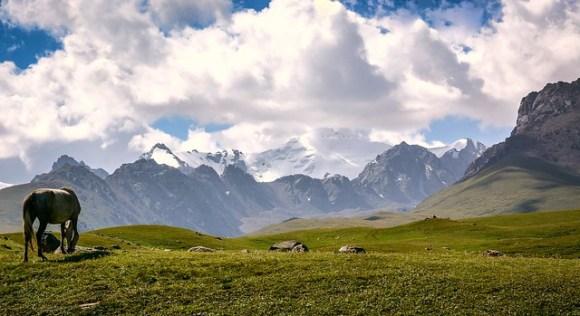 Kyrgyzstan-6072