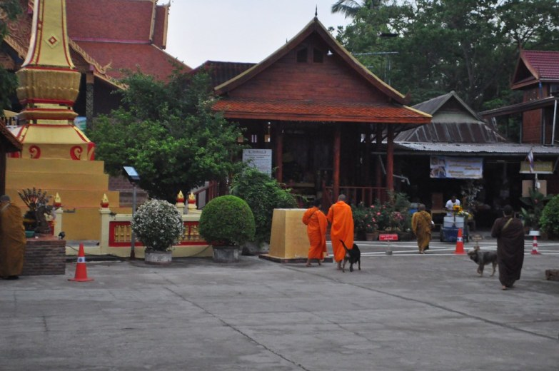 Monks retreat into the wat following the almsgiving in Chiang Khan, Thailand, March 2015.