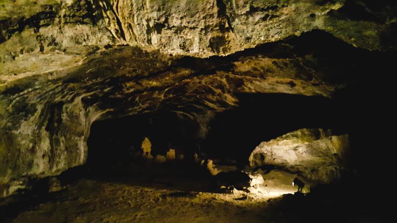 JEJU ISLAND // Hallim Park + Hyeopjae lava caves