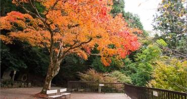 京都賞楓︱�山電� �馬寺.山行楓旅的經典賞楓處所