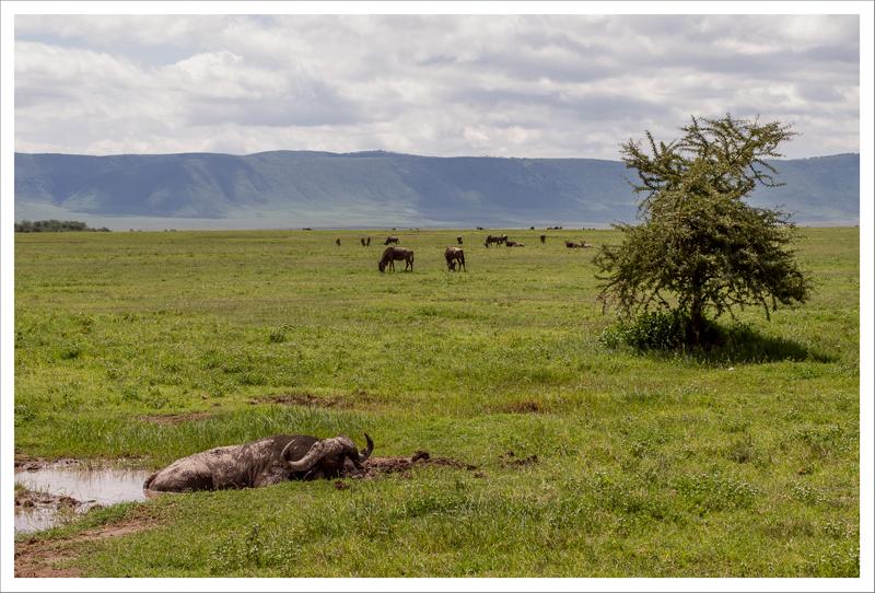 Tanzania-109