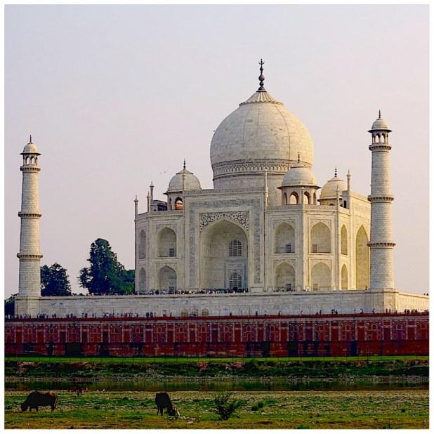 El Taj Mahal al atardecer