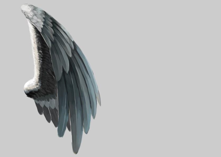 翼の実践検証1